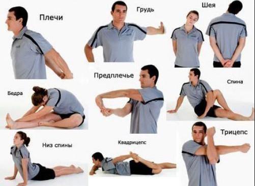 разминка перед тренировкой в тренажерном зале