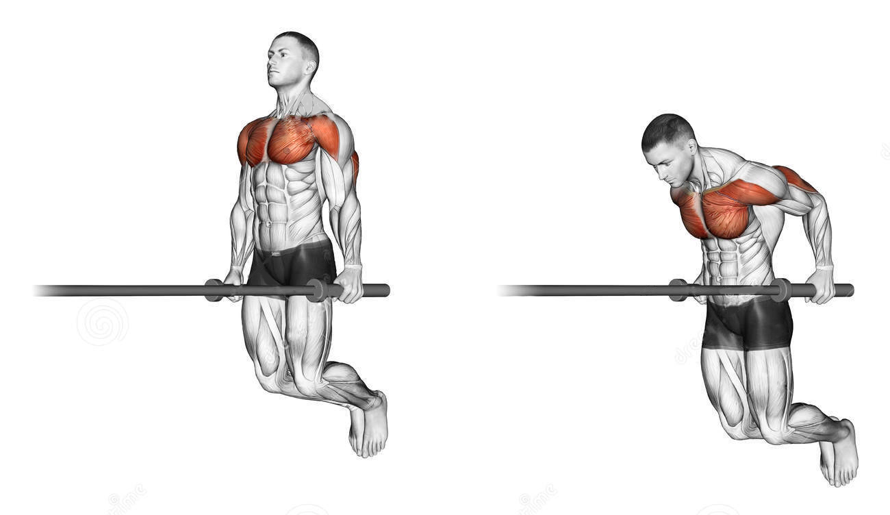 exercising-dips-bodybuilding-target-muscles-marked-red-initial-final-steps-43688912