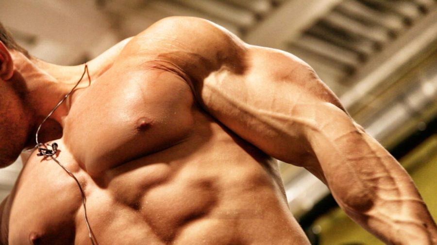 Набрать мышцы в домашних условиях 652