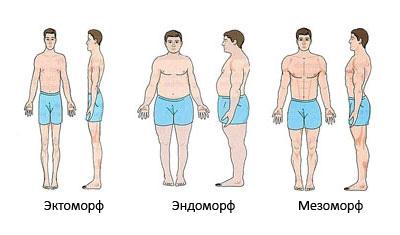 typeofbody