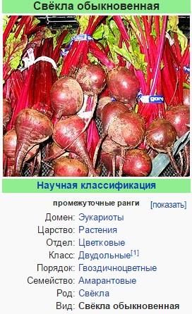 Красная свёкла - википедия