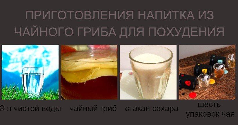 приготовления напитка из чайного гриба для похудения