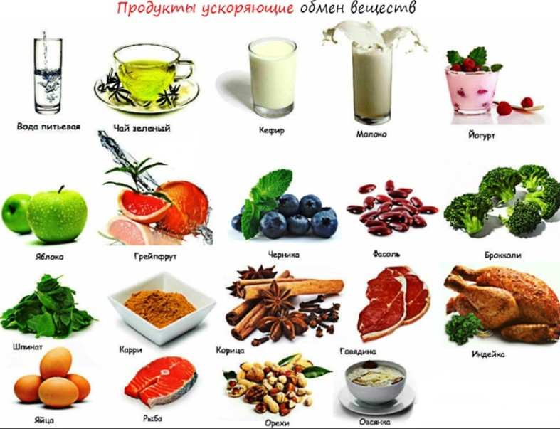 продукти ускоряющие обмен веществ