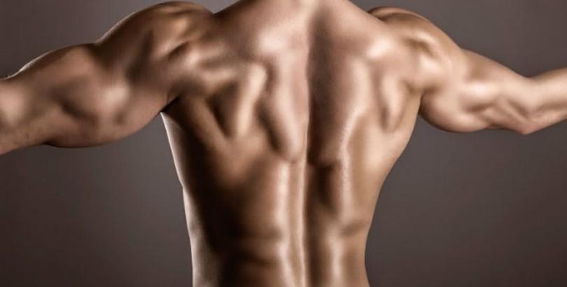 Упражнение на спину в тренажерном зале