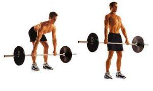 Упражнения для бицепса ног